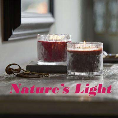 Nature's Light Partylite